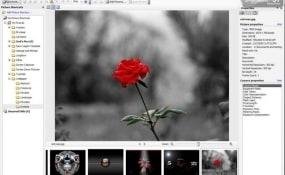 luchshie-programmy-dlya-obrabotki-fotog2